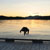 Princess Royal Island, Inside Passage